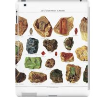 Vintage Geology Gemstone Crystal Minerals iPad Case/Skin