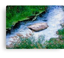 River stone Canvas Print
