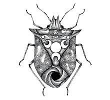cosmic stink bug Photographic Print