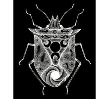 cosmic stink bug in white Photographic Print