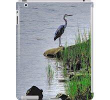 Heron on the shore iPad Case/Skin
