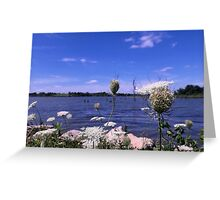 Queen Anne's Lace by Mozingo Lake Greeting Card