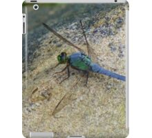 Big Blue iPad Case/Skin