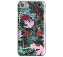 Fall Color   If you like, please purchase an item, thanks iPhone Case/Skin