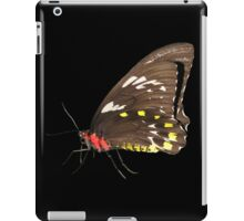 Butterfly 5- Orchard Swallowtail iPad Case/Skin