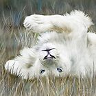 White Lion - Wild In The Grass - Sq by Carol  Cavalaris