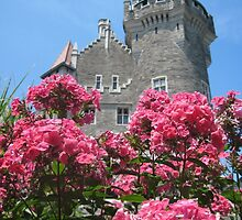 CASTLE FLOWERS by Lynn Wright