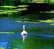 Swan Lake by Gilda Axelrod