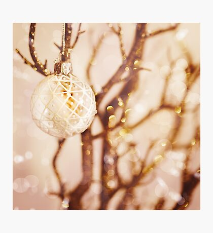 White snowy Christmas decoration Photographic Print