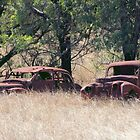 Two Rusty Old Cars by Sandy1949