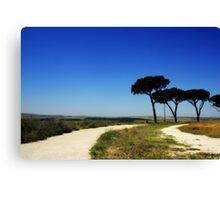 Blue Italian Summer Road Canvas Print