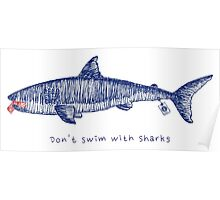Don't swim with sharks Poster