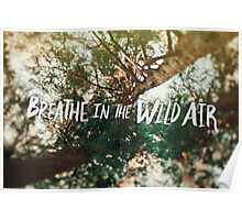 Breathe in the Wild Air Poster