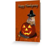 Thanksgiving Pilgrim Squirrel Greeting Card