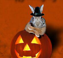 Thanksgiving Pilgrim Bunny by jkartlife
