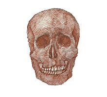 Brown Skeleton Photographic Print