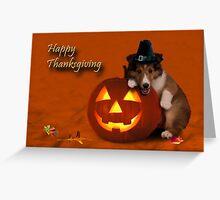 Thanksgiving Pilgrim Shetland Sheepdog Greeting Card