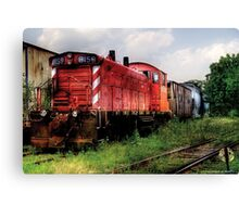 Train 8159 Canvas Print