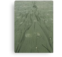 Lady In Green. A Sea Painting. Canvas Print