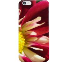 red and white dahlia iPhone Case/Skin