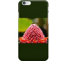 Gecko with flower iPhone Case/Skin