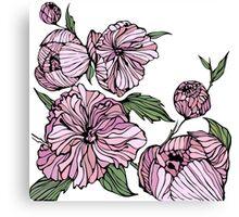 Flower. Peonies Canvas Print