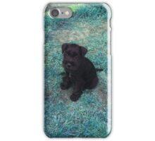 Schnauzer Puppy iPhone Case/Skin
