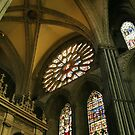 Stained Glass Windows by BlueMoonRose