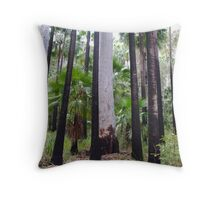 Carnarvon Gorge, Outback Queensland Throw Pillow