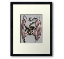 Stowaway (Desert) Framed Print