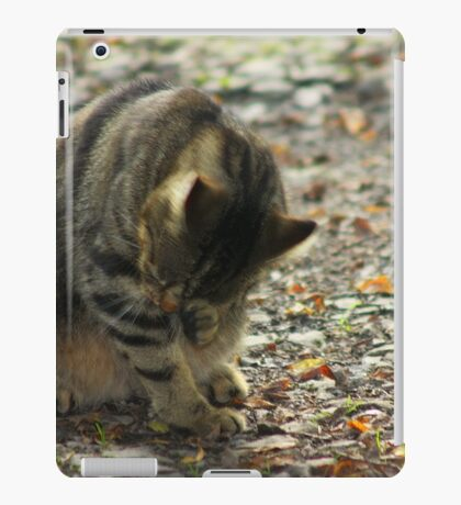 Something in my eyes iPad Case/Skin