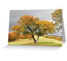 Favorite Tree Greeting Card