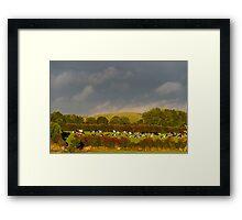 Sunshine and rain, County Kilkenny, Ireland Framed Print
