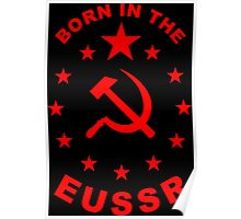 Born in the EUSSR EU parody Poster