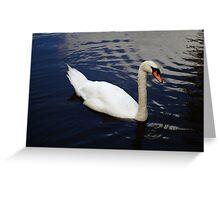 Swan at Oakfield Park Greeting Card
