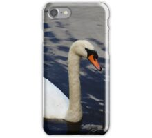 Swan at Oakfield Park iPhone Case/Skin