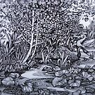 Sile river by elisabetta trevisan