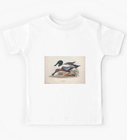 John Gould The Birds of Europe 1837 V1 V5 360 Shoveller Duck Kids Tee