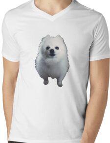 Gabe The Dog - BEST SELLING, VIRAL MEME, FAMOUS DOG Mens V-Neck T-Shirt