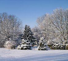 Snowy Landscape by b-chaney