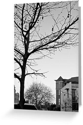 Winter on Flinton Street by Michelle Ricketts