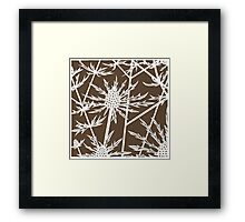 Sea hollies on brown background Framed Print