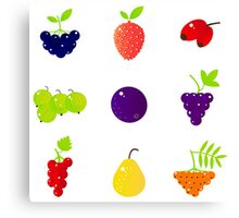 Wild Exotic fruity collection. NEW artistic Line in our designers shop Canvas Print