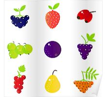 Wild Exotic fruity collection. NEW artistic Line in our designers shop Poster