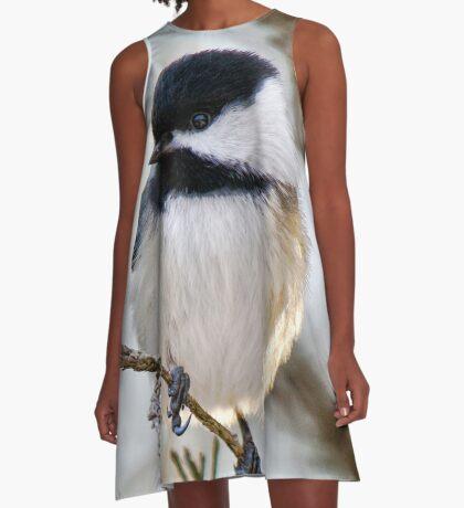 Chickadee A-Line Dress