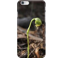 Nodding Greenhood Orchid iPhone Case/Skin