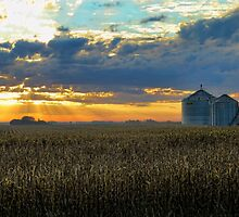 Sunrise And Silos 2 by Carolyn  Fletcher