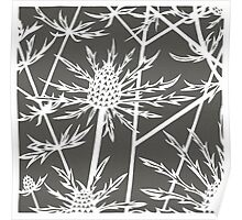 Paper art - Sea hollies on mocha background Poster