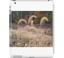 Tall grasses at Oak Openings iPad Case/Skin