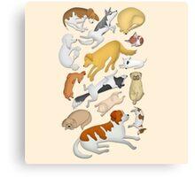 Sleeping Dog 101 Canvas Print
